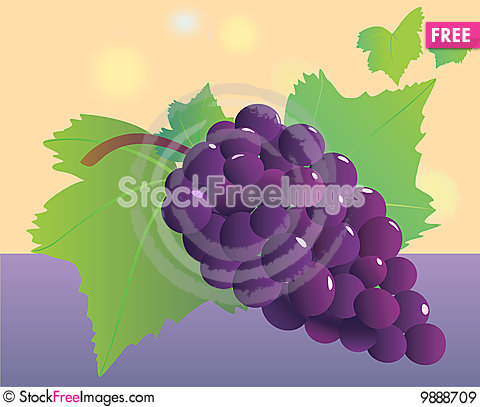 Grapevine bunch. Stock Photo