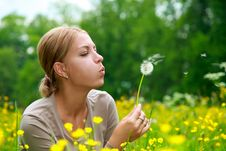 Free The Girl Blows On A Dandelion Stock Photography - 9880692