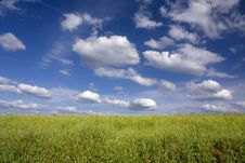 Free Green Field And Blue Sky Stock Photos - 9882843