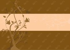 Free Brown Floral Background Royalty Free Stock Photos - 9886208