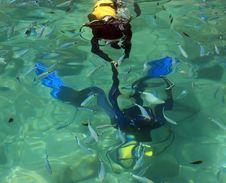 Free Diving Royalty Free Stock Image - 9886796