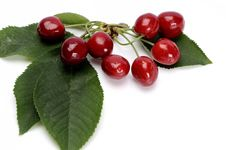 Free Cherries Royalty Free Stock Photography - 9886967