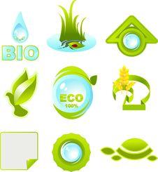 Free Ecology Royalty Free Stock Image - 9888866