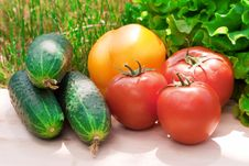 Free Healthy Food Royalty Free Stock Image - 9889576