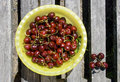 Free Sweet Cherries Stock Image - 9891881