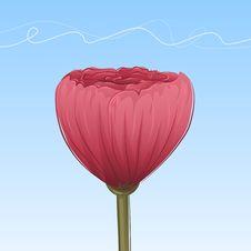 Free Hand-drawn Poppy Stock Photos - 9891403