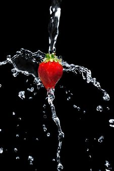 Free Strawberry Stock Photography - 9892742