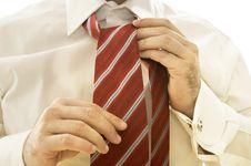 Free Businessman Adjusting Tie Royalty Free Stock Images - 9894079