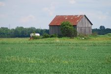 Free Old Barn In The Field Stock Photos - 9894703