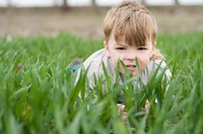 Free Boy In Grass Royalty Free Stock Photography - 9896797