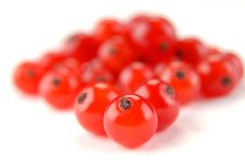 Free Red Currant Royalty Free Stock Image - 9897006