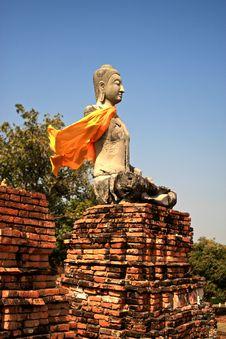 Free Buddha Royalty Free Stock Photo - 9897305