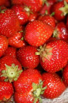 Free Organic Strawberries Royalty Free Stock Photos - 9898298