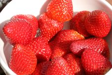 Free Sweet Strawberries In Natural Light Royalty Free Stock Photo - 9899005