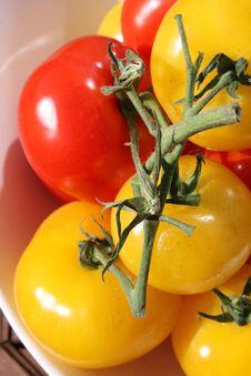 Free Organic Tomatoes Royalty Free Stock Photo - 9899055