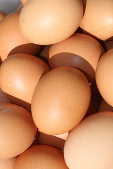 Free Organic Eggs Stock Image - 9899101