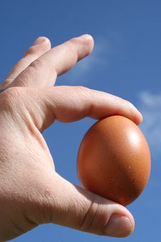 Free Egg Is Perfect Royalty Free Stock Images - 9899129