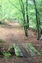 Free Rudeskov Path Stock Photos - 995443