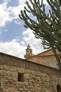 Free Rooftop Tower & Cactus Stock Photo - 995670