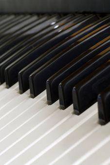 Free Piano Keys Stock Image - 992231