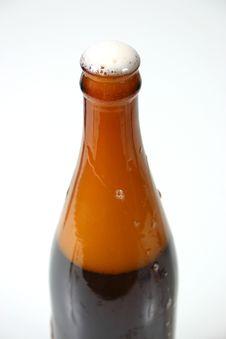 Free Beer Series 3 Royalty Free Stock Image - 992806