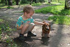 Free Boy With Badgerdog 2 Royalty Free Stock Photo - 995275