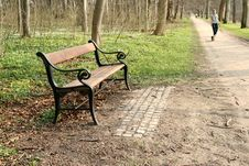 Free Bench Stock Photography - 995912