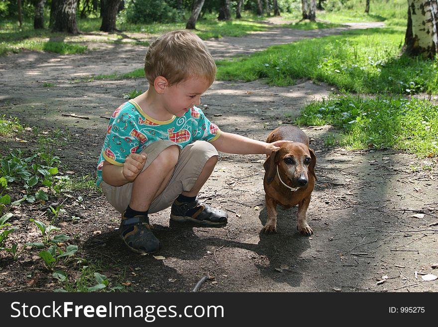 Boy with badgerdog 2