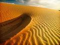 Free Sand Dunes Stock Image - 9908481