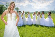 Leader Bride With Groups Of Bride Stock Photos
