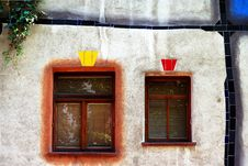 Free Two Windows In Organic Facade Stock Image - 9900701