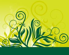 Free Green Floral Background Royalty Free Stock Image - 9903496