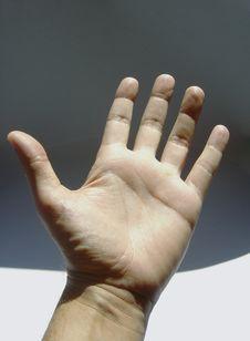 Free Opened Hand Stock Photo - 9905460