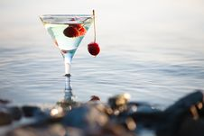 Free Martini Royalty Free Stock Photo - 9906535