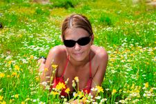 Free Young Woman Laying Down In Meadow Royalty Free Stock Image - 9907156