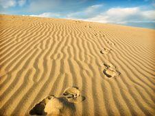 Free Sahara Stock Photography - 9908302