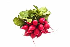 Free Bunch Of Fresh Radish Stock Images - 9908514