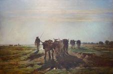 Free &x22;Boeurs Allant Au Labour, Effet De Matin&x22;, Constant Troyon, 1855. Stock Photos - 99031863