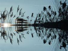 Free Reflection, Water, Tree, Sky Royalty Free Stock Photos - 99051328