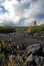 Free Big Island, Hawaii Royalty Free Stock Photography - 9918457