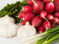 Free Spring Onions, Garlic, Lettuce And Radish Royalty Free Stock Photo - 9919125