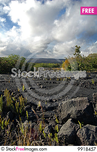 Free Big Island, Hawaii Royalty Free Stock Photography - 9918457
