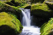 Free Waterfall Stock Photos - 9912343