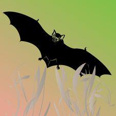Free Bat Illustration Stock Image - 9917001