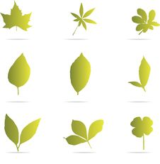 Green Leaf Set Royalty Free Stock Images