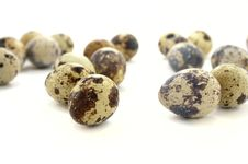 Free Quail Eggs Royalty Free Stock Photos - 9918998