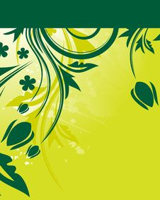 Free Green Floral Background Royalty Free Stock Photo - 9919685