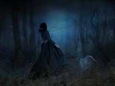 Free Darkness, Atmosphere, Phenomenon, Forest Stock Photo - 99191190