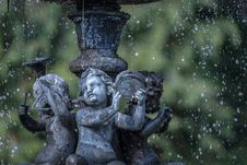 Free Water, Statue, Tree, Sculpture Royalty Free Stock Image - 99197616
