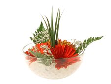 Free Flower Bowl Royalty Free Stock Image - 9921016